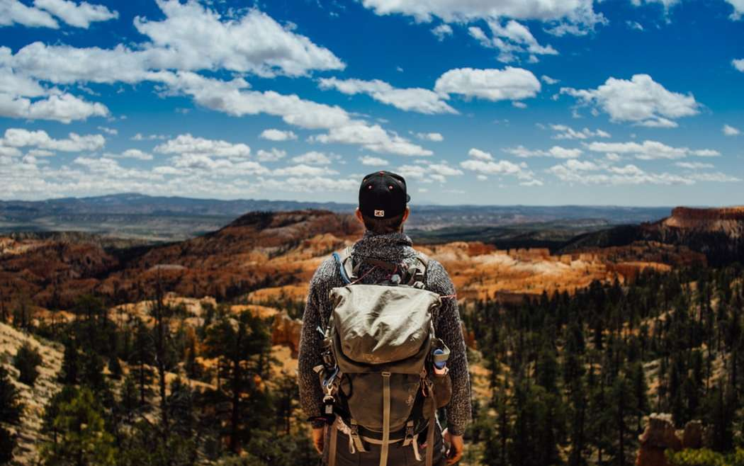Accounting strategy emerges out of the wilderness